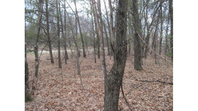 L4 S Duck Creek Ave Adams, WI 53910 by Whitemarsh Realty Llc $7,500